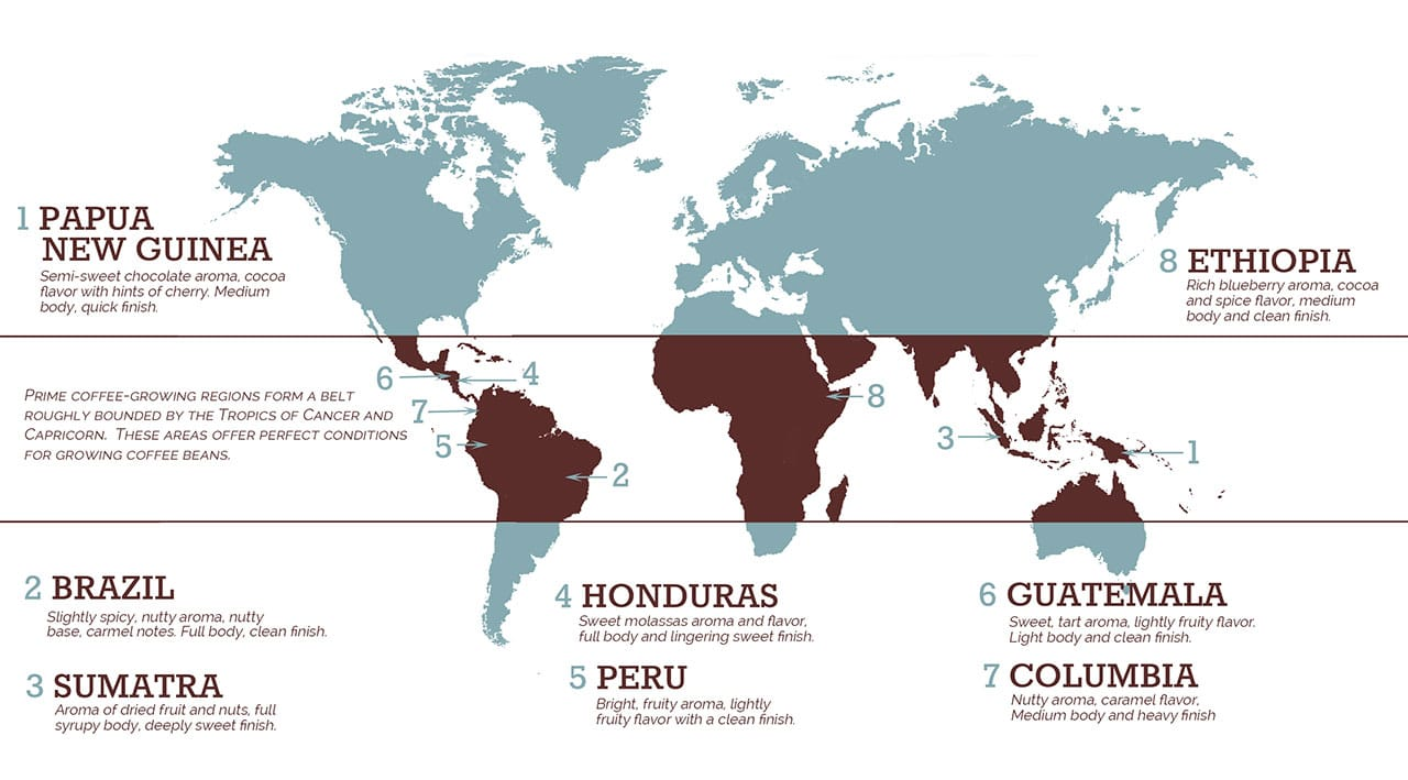 Coffee cultivation across the globe
